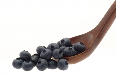 INI Farms, Munger Farms team up to grow blueberries in India