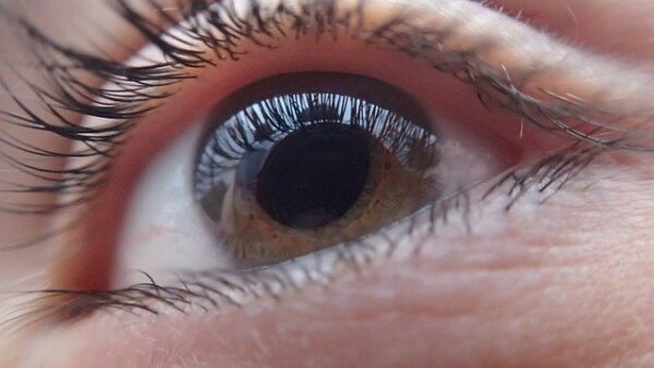 SPARC succeeds in phase 3 trial of PDP-716 in glaucoma patients